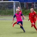 D2 – später Schock beim 2:2 gegen den HSV